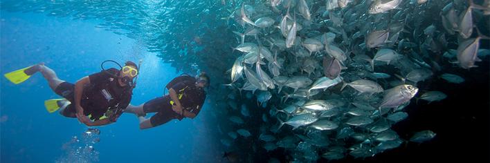 ScubaXP duikcursus - leer duiken - duikles volgen